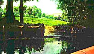 Il fiume Noncello alla periferia sud di Pordenone – 1985 – Giorgi ©