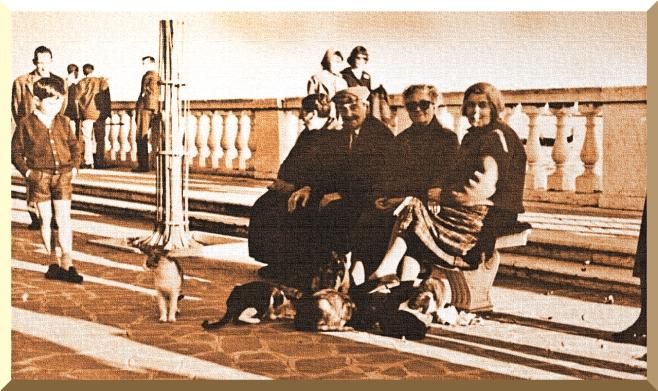 Popolani a Venezia - 1961 - Provate a contare i gatti.