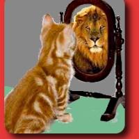 Specchio [344]